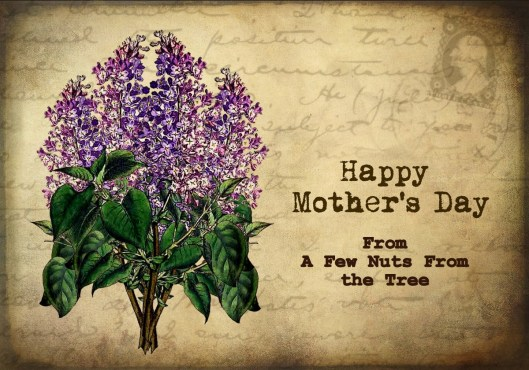 mothers day lilac