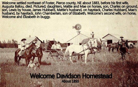 davidson homestead 1893